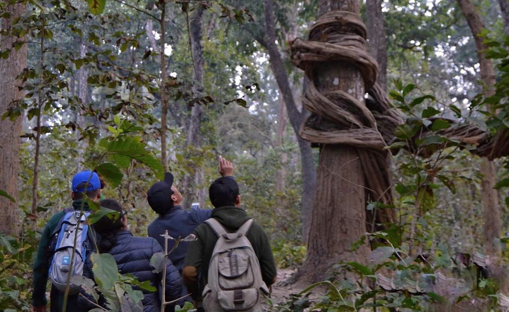 Pěší Safari s pobytem u místních v NP Chitwan