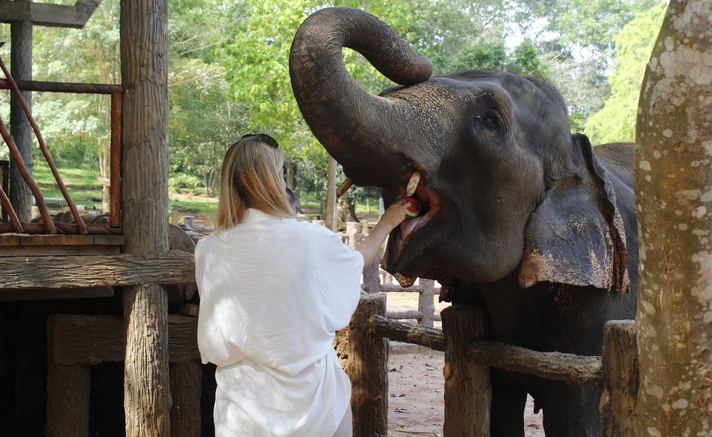 Sloní vesnice