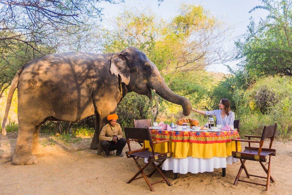 Návštěva sloní vesnice