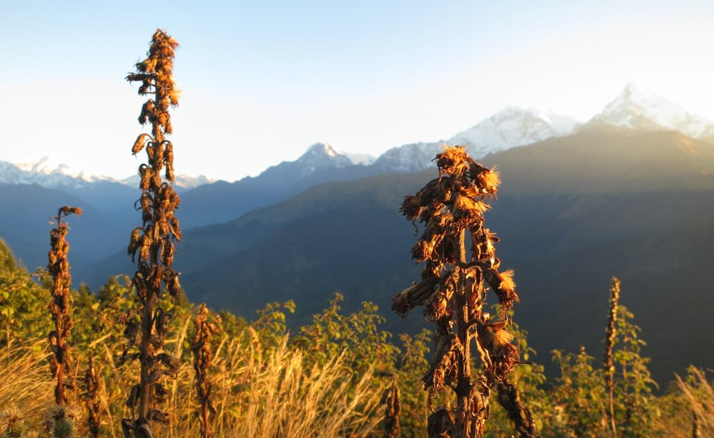 oblast Annapuren