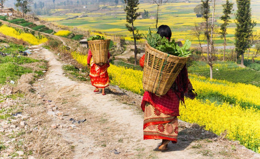 Úvod do Himalájí 2 - Annapurna
