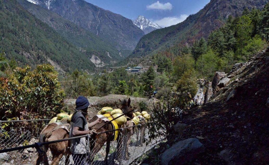 Oslí zácpa cestou do Phakdingu